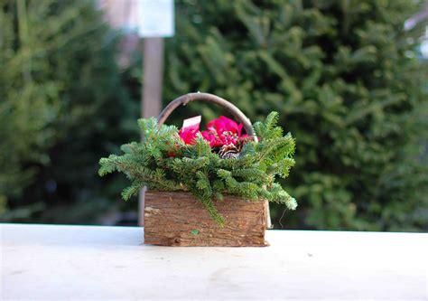best 28 christmas tree shop pembroke ma hours tree