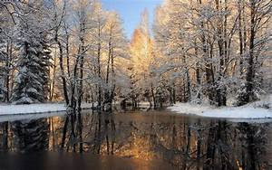 Winter Nature Backgrounds