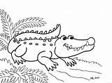Crocodile Drawing Line Coloring Printable Getdrawings sketch template