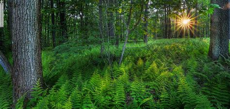pennsylvania landscapes glen green photography glen