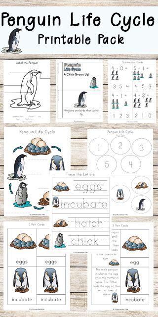 penguin life cycle worksheets www 123homeschool4me com