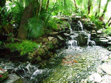 amazing fish ponds amazing fish pond concept ideas new home scenery