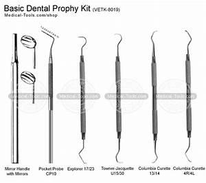 Basic Dental Prophy Kit Veterinary Instruments Medical ...