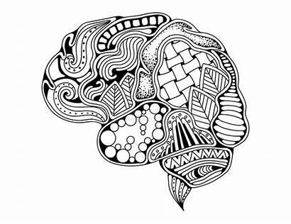Brain Human Mind Doodle Creative Decorative Curves