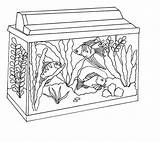 Fish Coloring Tank Aquarium Awesome Pages Clipart Netart Background Looking 52kb Drawings Webstockreview Again Bar Case Don sketch template
