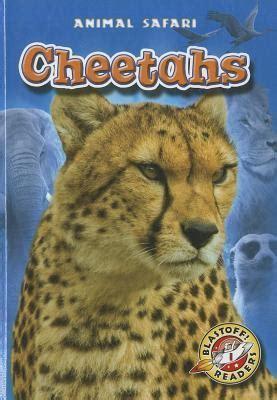 cheetahs  megan borgert spaniol