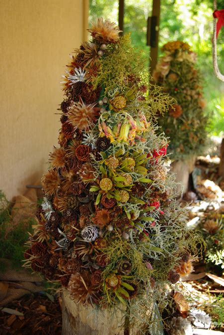 natural christmas decorations   plants africa