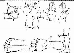 Лечение гипертонии су джок