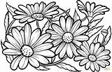 Coloring Daisies Colorear Dibujos Printable Daisy Margaritas Disegni Adult Nature Margherite Dibujo Supercoloring Imprimir Mandala Drawing Burning Stampare Colorare Patterns sketch template