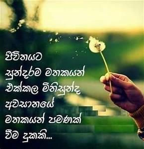 Good Friendship Quotes In Sinhala QuotesGram