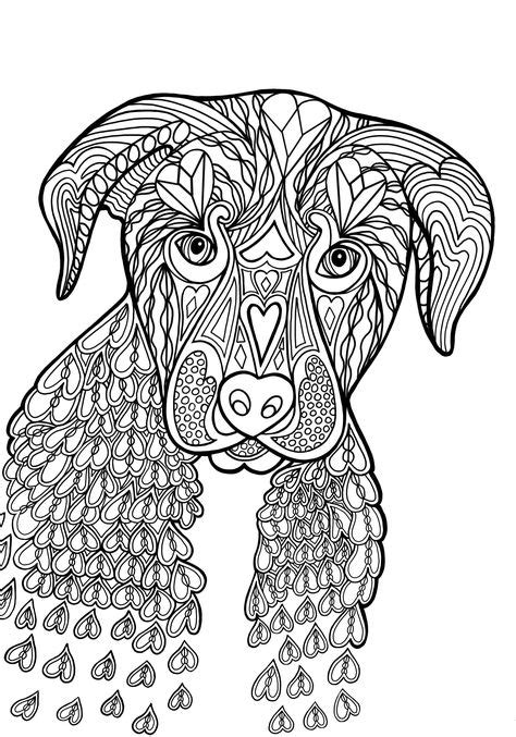 20 Best Drawings for my Coloring Books images | Coloring
