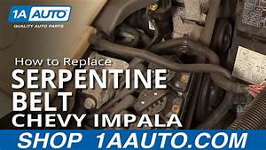 Search Results How To Install Repair Replace Serpentine