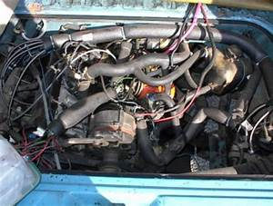 Tom U0026 39 S Vw Pages
