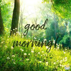 good morning  good morning morning qoutes morning