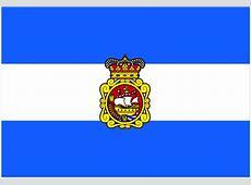 Bandera de Aviles