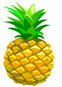 Ananas clipart - Clipground