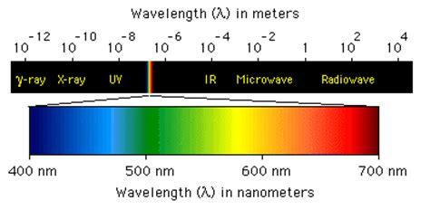 blue light wavelength spectrophotometry