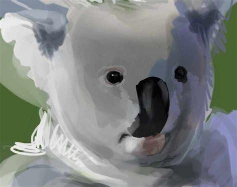 V Ling Koala