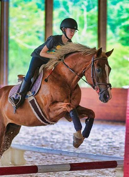 Camp Horse Jumping Specialty Riding Equestrian Overnight