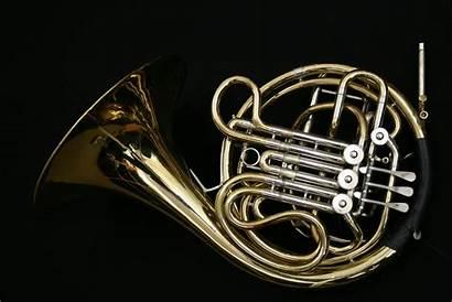 Conn 28d Horns