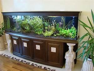 Cool Home Aquariums Picture   Aquarium Ideas and Design ...