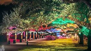 When Is Zoo Lights In Houston Txu Presents Zoo Lights At The Houston Zoo Youtube