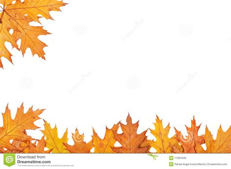 Fall Clipart Free 7 Best Images Of Free Printable Fall Borders Clip
