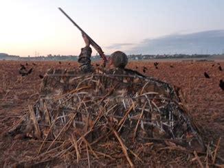 rheinland ziegel röben kr 228 henjagdseminar mit schie 223 en auf dem jagdparcours