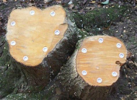 Tree Stump And Root Killer Plugs