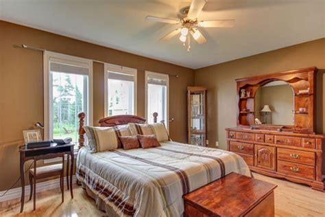 color paint   brown furniture bedroom paint