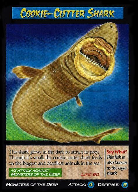 cookie cutter shark wierd nwild creatures wiki