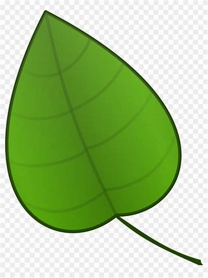 Clipart Leaf Things Clip Pngfind