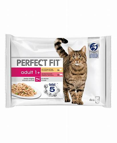 Adult Perfect Chicken Salmon Cat Wet Pack