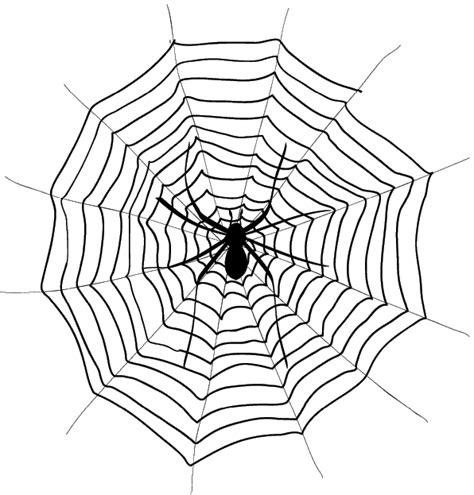 coloriage 224 imprimer animaux arachnides araign 233 e num 233 ro 23882