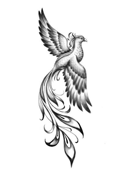 Pin by Sophia S on Tattoo   Phoenix tattoo design, Phoenix tattoo feminine, Tattoos