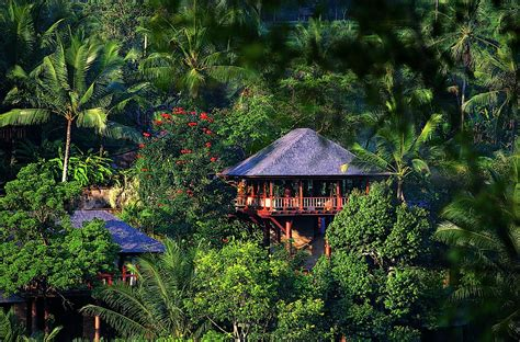 private islands  rent como shambhala estate