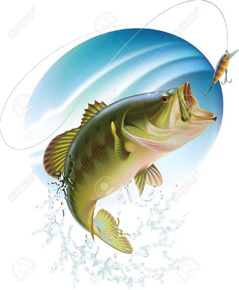 awesome largemouth bass fish drawings mauro pinterest