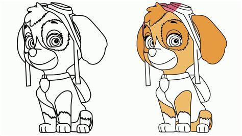 Paw Patrol coloring pages Drawing Skye from Paw Patrol #
