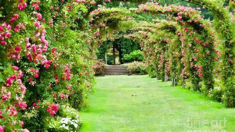 Garden Picture Hd by Garden Wallpaper Desktops Wallpapersafari
