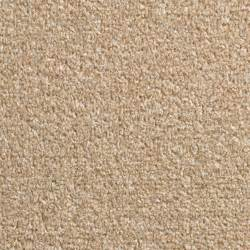 wall ideas for bathrooms colours palermo beige carpet w 4000 departments diy