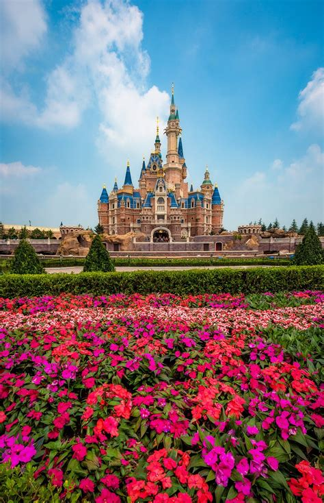 shanghai disneyland grand opening report part  disney tourist blog