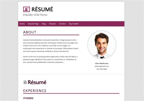 Resume Hosting by R 233 Sum 233 Ithemes