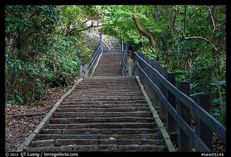 picturephoto stairs leading  elephant mountain taipei