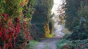 Espace Atypique Val D Oise : d fendons les espaces naturels sensibles du val d 39 oise le blog de nessrine menhaouara ~ Melissatoandfro.com Idées de Décoration