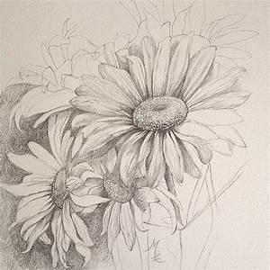 17 best ideas about Daisy Drawing on Pinterest   Daisy art ...