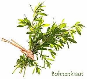 Frisches Bohnenkraut Einfrieren : bohnenkraut anbauen standort pflege verwendung ~ Lizthompson.info Haus und Dekorationen
