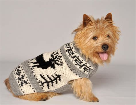 doge sweater sweater hairstyles