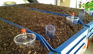 Wärmepumpe Selber Bauen : automatische bew sserung selber bauen mr greens welt bew ~ Lizthompson.info Haus und Dekorationen