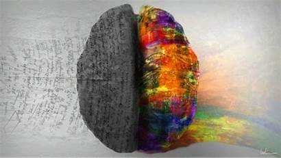 Hemisferios Cerebrales Derecho Izquierdo Cerebral