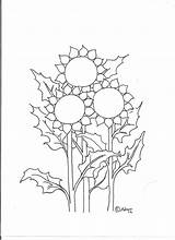 Sunflower Coloring Sunflowers Pages Printable Three Flowers Sheets Cartoon Adron Coloringpagesbymradron Children Mr Fields Easy Popular sketch template